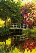 Secret Garden III by Bent Rej