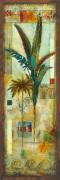 City Palms II by John Douglas