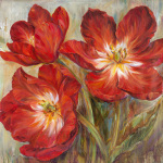 Flamenco Reds by Carson