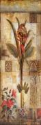 Mystique Opus II by John Douglas
