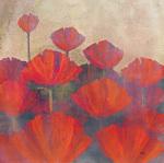 Poppies II by Robert Holman