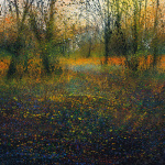 Autumn Glade by Paul Evans