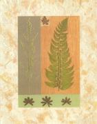 Green Fern by Denise Duplock