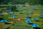 Umbrellas Blau Nr. 14 (1991) by Javacheff Christo