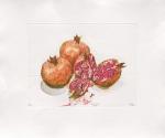 Pomegranates, 2000 by Robert C. Rore