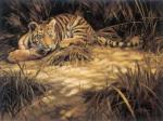 Tiger Mischief