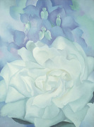White Rose with Larkspur No. 2 1927