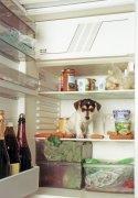 Refrigerator by Heinz Krimmer