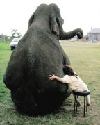 Girl hugging an elephant by John Drysdale