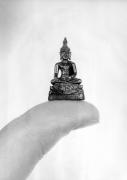 Tiny Buddha by Heinz Krimmer