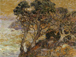 Point Lobos, Monterey Coast by Franz A. Bischoff