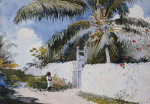A Garden In Nassau, 1885. by Winslow Homer