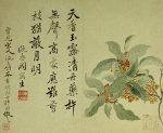 Cassia. From An Album Of Ten Leaves by Yun Shou Ping