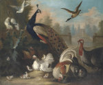 A Peacock And Other Birds In An Ornamental Landscape by Marmaduke Craddock