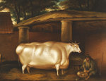 The White Heifer That Travelled', With A Man Slicing Turnips In A Stable Yard by Thomas Weaver