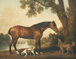 A Bay Hunter a Springer Spaniel and a Sussex Spaniel 1782