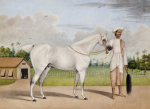 A Small White Stallion Standing With A Groom Holding A Chauri by Shaikh Muhammad Amir Of Karraya