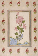 Bird And Flower Study, Mughal India by Christie's Images