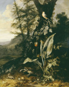 Forest Floor With A Toad And A Lizard, A Bullfinch On A Branch Of Ivy by Matthias Withoos