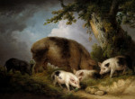 A Sow And Her Four Piglets In A Wooded Landscape by George Morland