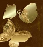 Mariposas de oro by Luisa Gaye Ayre