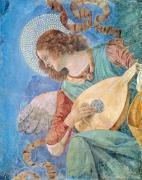 Angel Musician (fresco) by Melozzo da Forli