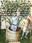 Gathering and pressing grapes by Italian School