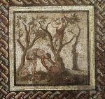 Harvesting Grapes from Saint-Romain-en-Gal by Roman Art