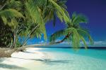 Maldives Beach by Anonymous