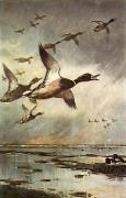 Coming in from Sea (Restrike Etching) by Archibald Thorburn