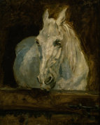 The White horse 'Gazelle' by Henri de Toulouse-Lautrec