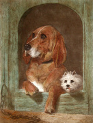 Dignity and Impudence (Dogs) (Restrike Etching) by Sir Edwin Henry Landseer