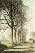 Autumn Shadows (Restrike Etching) by Graham Clilverd