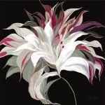 Lily XXI by Sally Scaffardi