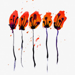 Poppies by Erin Rafferty