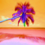 Tropicana by Erin Rafferty