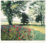 Summer Meadow (Restrike Etching) by Jo Barry