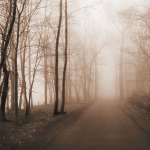 Memory Lane by Erin Clark
