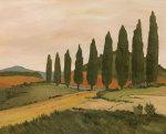 Shady Tuscan Road by Joe Clark