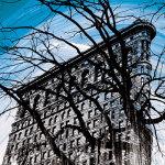 Gotham Grandeur by Erin Clark