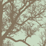 Winter Tree IV by Erin Clark