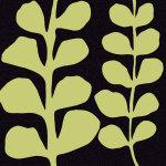Green Fern on Black by Denise Duplock
