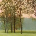 Haze by Elissa Gore