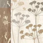 Flowers & Ferns I by Steven Klein
