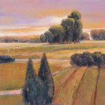 Summer Cypress by Langford