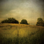 Another Place 2 by Crina Prida
