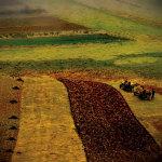 Transylvania 2 by Crina Prida