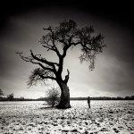 Conversation by Marcin Stawiarz