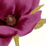 Grandiflora Blush I by Linda Wood