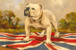 The British Bulldog by Anonymous